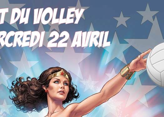 affiche nuit du volley2